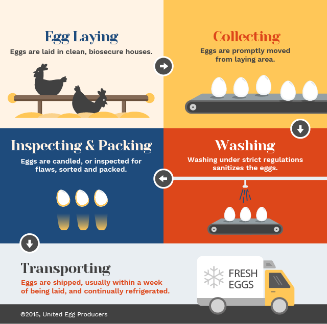 Resources - United Egg Producers