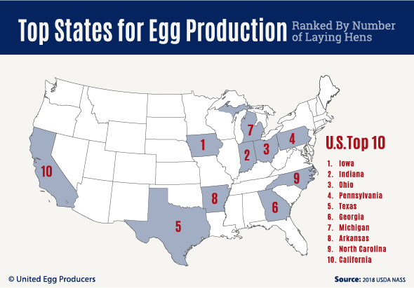 Facts & Stats - United Egg Producers